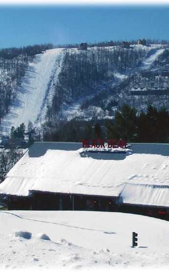 Black Bear Tavern photo