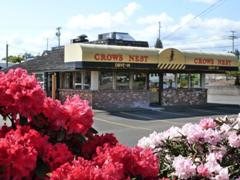 Crows Nest Drive-In photo
