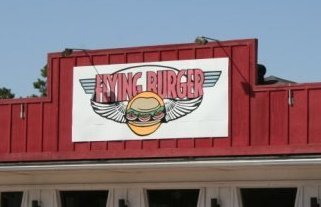 Flying Burger - Small User Photo