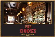 The Goose - Small User Photo