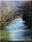 Shoal Creek Canoe Run photo