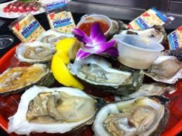 Siesta Key Oyster Bar photo