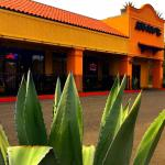 Agave Cocina Mexicana & Tequila Bar - Small User Photo