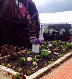 The Wine Mill - Peninsula, OH