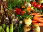 Organic Restaurants cuisine pic